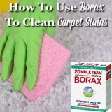 how to use borax to clean carpet stains