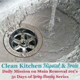 clean kitchen disposal and drain