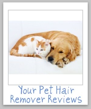 Pet Hair Removers Reviews Which Products Work Best