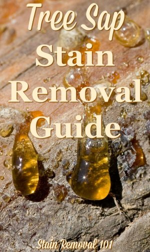 Tree sap stain removal guide, with step by step instructions, for clothing, upholstery, carpet, plus hard surfaces like your car {on Stain Removal 101} #TreeSapStainRemoval #SapStainRemoval #TreeSapRemoval