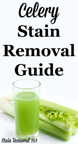 Step by step instructions for celery juice stain removal from clothing, upholstery and carpet {on Stain Removal 101}