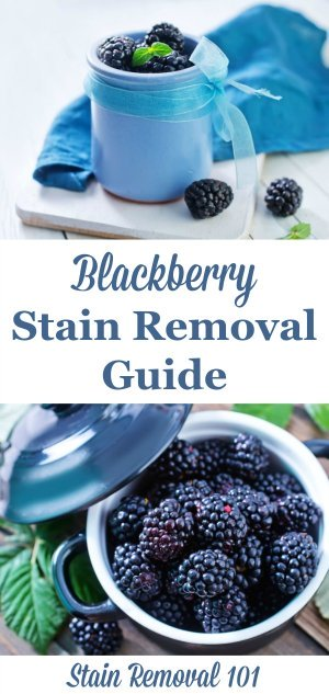 Blackberry stain removal guide for clothing, upholstery and carpet {on Stain Removal 101}