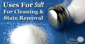 Uses for salt for cleaning and stain removal {on Stain Removal 101}
