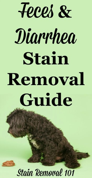 Feces stain removal and diarrhea stain removal guide, for all kinds of yucky accidents on clothing, upholstery and carpet {on Stain Removal 101}