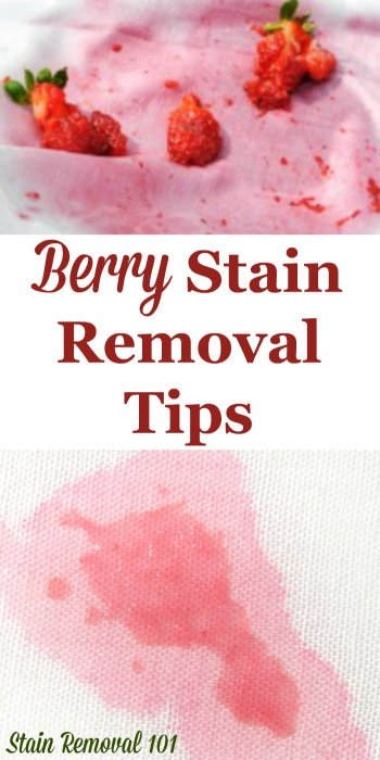 Here is a round up of berry stain removal tips, tricks and home remedies which really work to remove these stubborn spots, caused by a multitude of different berries, from all types of surfaces {on Stain Removal 101} #StainRemoval #RemoveStains #RemovingStains