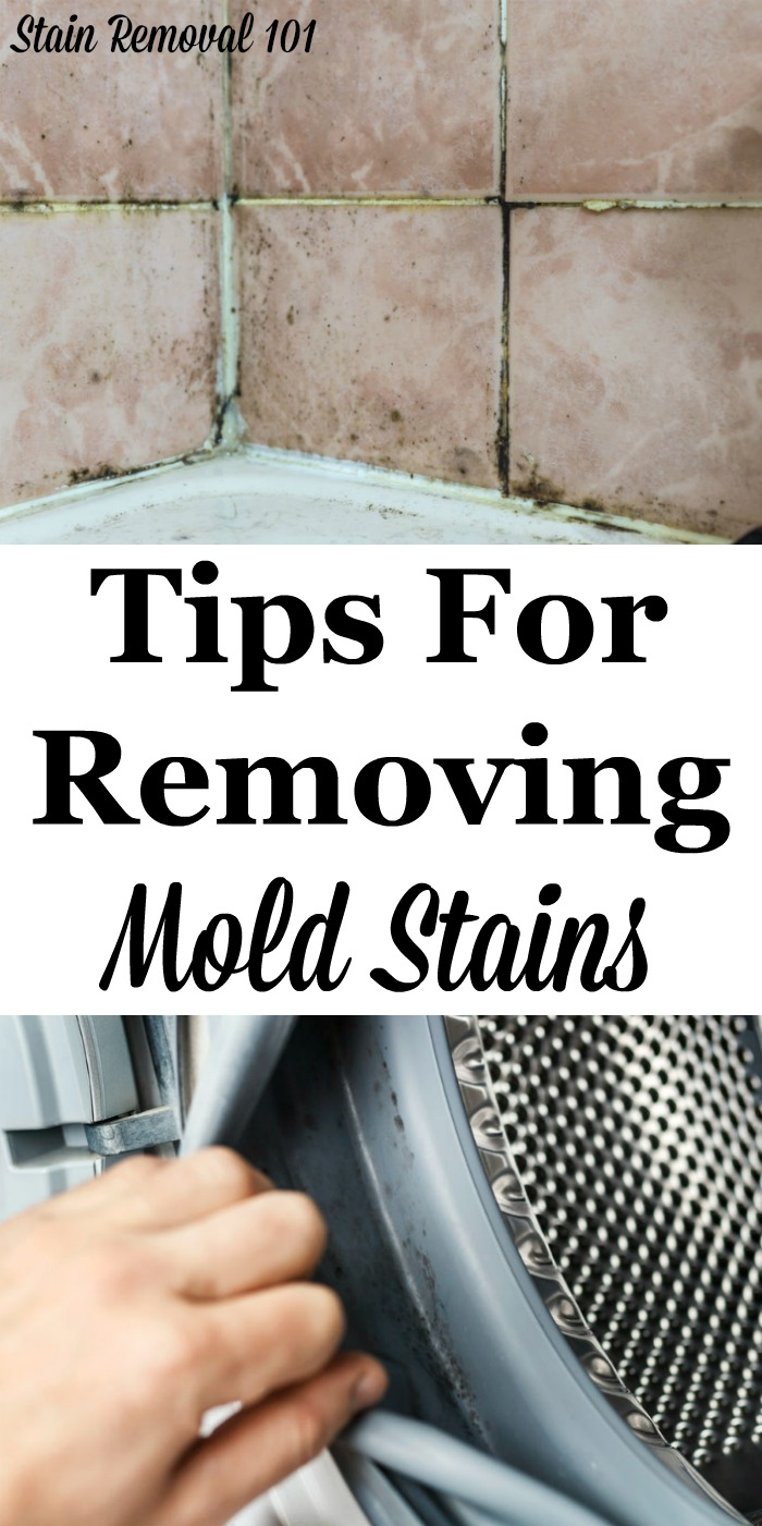 Here is a round up of mold removal stain tips for many types of surfaces around your home, to get rid of these often tough to remove fungal stains {on Stain Removal 101} #StainRemoval #CleaningTips #RemoveStains