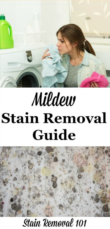 Mildew stain removal guide from clothes, upholstery, carpet and hard surfaces, on Stain Removal 101 #MildewStainRemoval #MildewStains #MildewRemoval