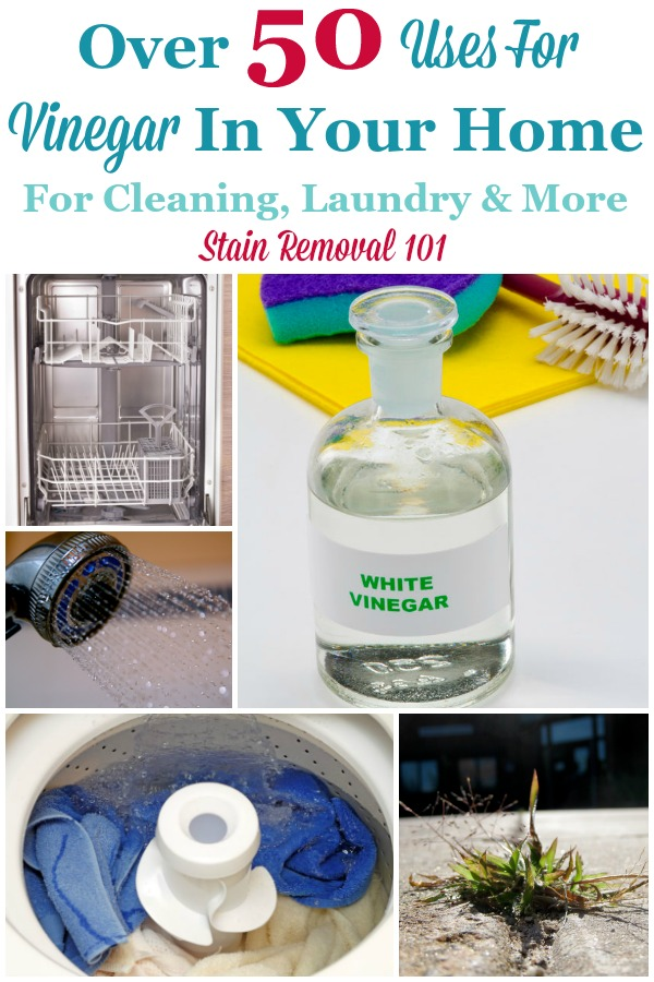 Over 50 uses for vinegar in your home, for cleaning, laundry and more {on Stain Removal 101} #UsesForVinegar #VinegarUses #UsesOfVinegar