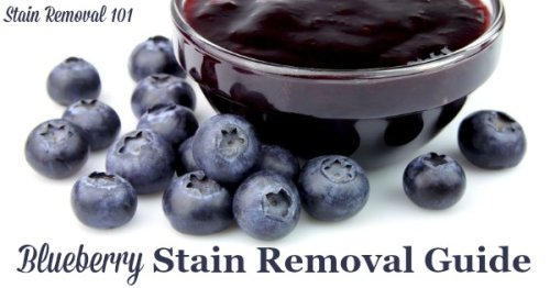 How to remove blueberry stains from clothing, upholstery and carpet, with step by step instructions {on Stain Removal 101}