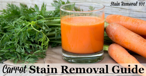 Step by step instructions for how to remove carrot stains from clothing, upholstery and carpet {on Stain Removal 101}
