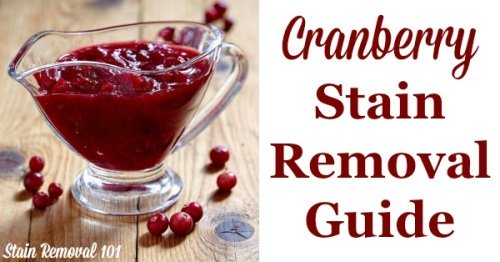How to remove cranberry stains, such as from cranberry sauce or juice, from clothing, upholstery and carpet - just in time for Thanksgiving! {on Stain Removal 101}