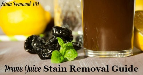 Step by step instructions for prune juice stain removal from clothing, upholstery and carpet {on Stain Removal 101}