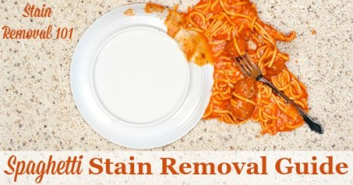 Step by step instructions for how to remove spaghetti stains caused by tomato based sauces, from clothing, upholstery and carpet {on Stain Removal 101}
