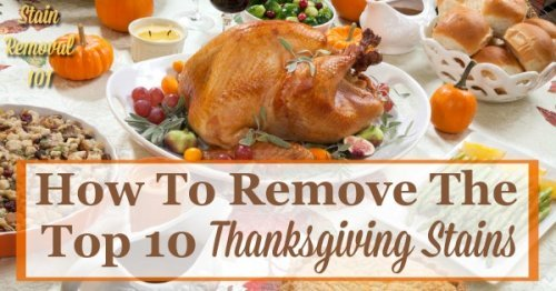How to remove the top 10 Thanksgiving stains {on Stain Removal 101}