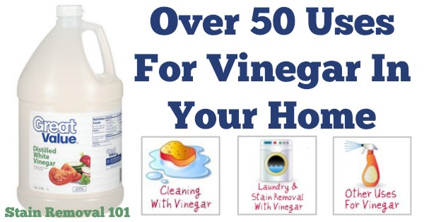 Over 50 uses for vinegar in your home {on Stain Removal 101}