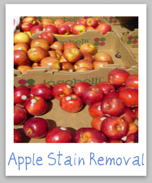 Apple stain removal guide for clothes, upholstery and carpet {from Stain Removal 101}