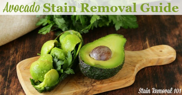 Step by step instructions for avocado stain removal from clothing, upholstery and fabric {on Stain Removal 101}