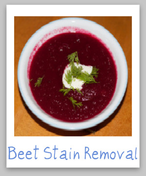 Step by step instructions for how to remove beet juice stains from clothing, upholstery and carpet {on Stain Removal 101}