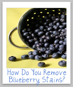 Berry Stain Removal Tips Amp Tricks That Work