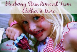 blueberry stain removal from clothes