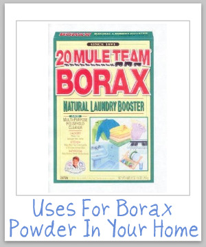 Round up of uses for Borax powder around your home, for cleaning, laundry, stain removal, odor control, as an ingredient in homemade cleaner recipes, and even for pest control {on Stain Removal 101}
