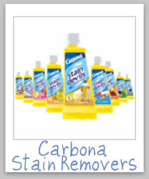 Carbona stain remover product reviews and information, including for the 9 versions of the Stain Devils {on Stain Removal 101}