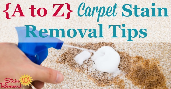 Round up of over 30 articles all about carpet stain removal based on the type of stain, so no matter what spilled on your carpeting you can remove it {on Stain Removal 101}