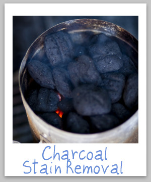 Charcoal stain removal guide for clothing, upholstery and carpet, with step by step instructions {on Stain Removal 101}