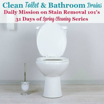 Clean toilet and bathroom drains