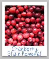 cranberry stains