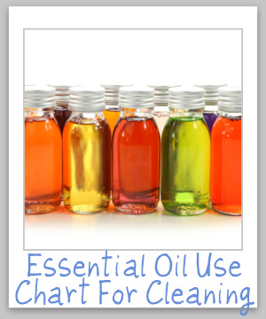 A list of the top 18 essential oils commonly added to homemade cleaning and laundry supplies, with what special properties each has, if any, what they smell like, and what scents they pair well with in this essential oil use chart {on Stain Removal 101}