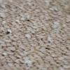 carpet macro