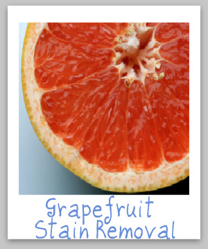 How to remove grapefruit juice stains from clothing, upholstery and carpet {on Stain Removal 101}
