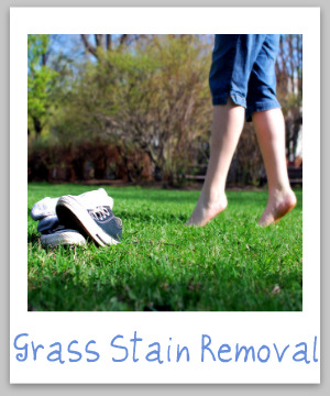 How to remove grass stains from clothing, upholstery and carpet with step by step instructions {on Stain Removal 101}