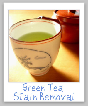 Green tea stain removal guide for clothing, upholstery and carpet {on Stain Removal 101}