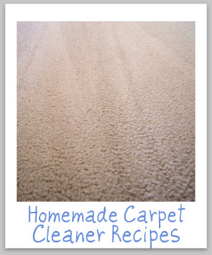 Several homemade carpet cleaner recipes, including a shampoo for spots, as well as two recipes for carpet cleaners {on Stain Removal 101}