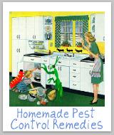 homemade pest control remedies