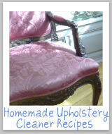 Upholstery Cleaners & Stain Remover Reviews