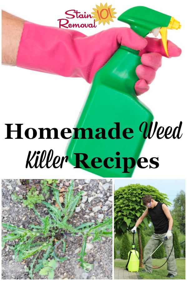 Here is a round up of homemade weed killers for use around your home and garden {on Stain Removal 101} #HomemadeWeedKiller #WeedKillerRecipe #WeedKiller