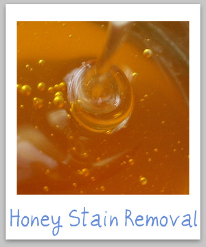 How to remove honey stains from clothing, upholstery and carpet, with step by step instructions {on Stain Removal 101}