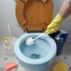 cleaning toilet with toilet brush