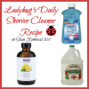 daily shower cleaner recipe