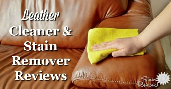 Leather cleaner and stain remover reviews