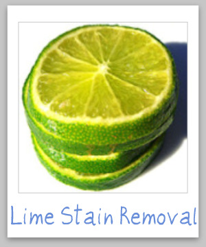 Lime stain removal guide, with step by step instructions for clothing, upholstery and carpet {on Stain Removal 101}