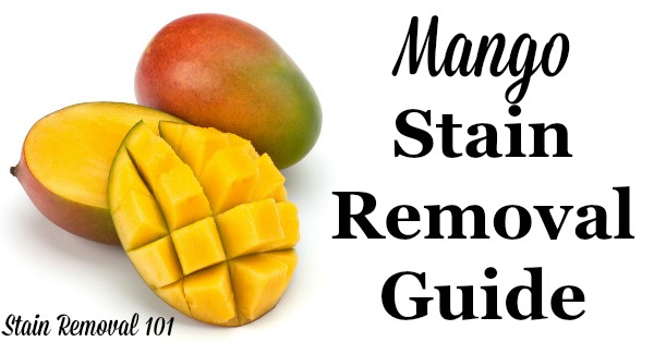 Step by step instructions for mango stain removal from clothing, upholstery and carpet {on Stain Removal 101}