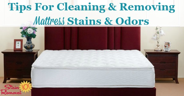 tips for cleaning and removing mattress stains and odors on stain removal 101