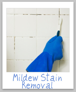 mildew stain removal