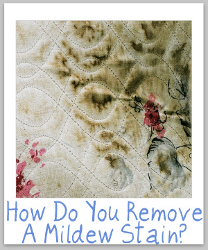 stain removal mildew tips for all types of surfaces. Black Bedroom Furniture Sets. Home Design Ideas