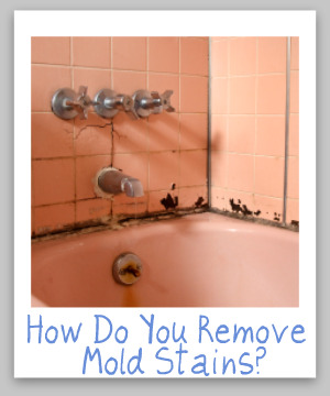 mold removal stain