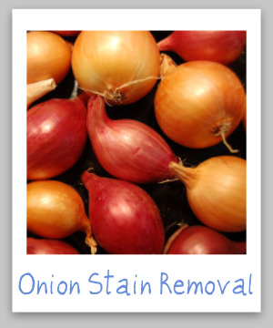 How to remove onion stains from clothing, upholstery and carpet, with step by step instructions {on Stain Removal 101}